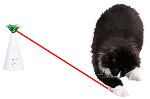 """Jó dolog a macskákat """"idegesíteni""""?"""