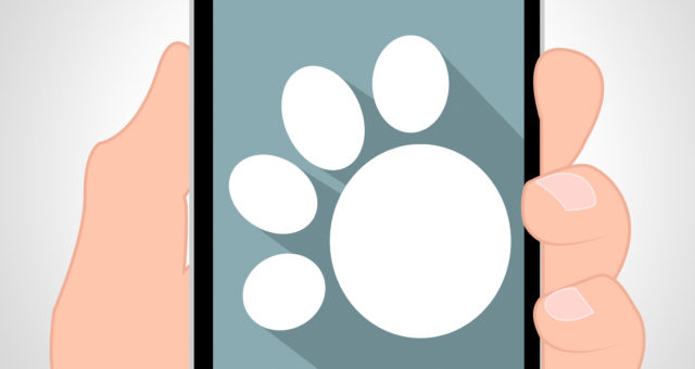 Hasznos és érdekes mobilalkalmazások – kutyák, macskák és gazdik részére