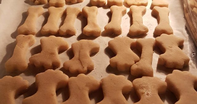 Karácsonyi kutya-macska sütirecept